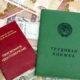 Бюджет пенсионного фонда