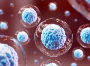 Клеточная терапия при старении